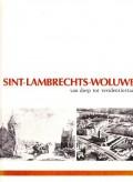 Sint-Lambrechts-Woluwe van dorp tot residentiestad