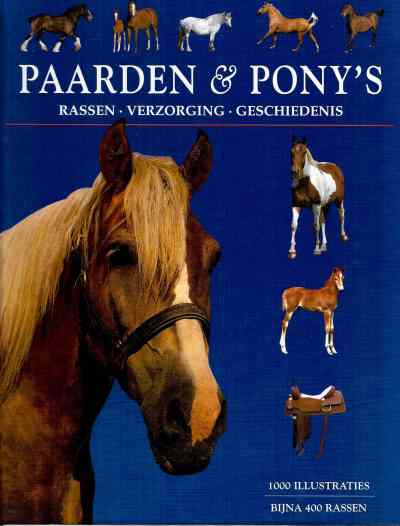 Tamsin Pickeral - Paarden & Pony's